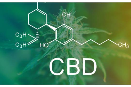 What is CBD Business_